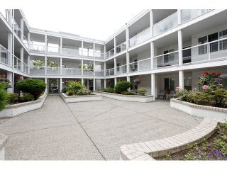 """Photo 2: 105 20240 54A Avenue in Langley: Langley City Condo for sale in """"Arbutus Court"""" : MLS®# F1315776"""
