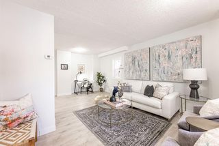 Photo 6: 317 25th Street West in Saskatoon: Caswell Hill Residential for sale : MLS®# SK841178