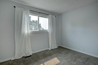 Photo 20: 92 Erin Croft Crescent SE in Calgary: Erin Woods Detached for sale : MLS®# A1136263