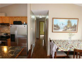 Photo 40: 416 MT ABERDEEN Close SE in Calgary: McKenzie Lake House for sale : MLS®# C4116988
