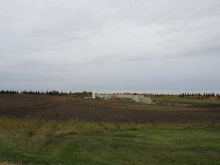 Photo 6: 55516 RR 241: Rural Sturgeon County Rural Land/Vacant Lot for sale : MLS®# E4259412
