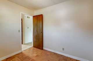 Photo 11: 181 Templemont Drive NE in Calgary: Temple Semi Detached for sale : MLS®# A1122354