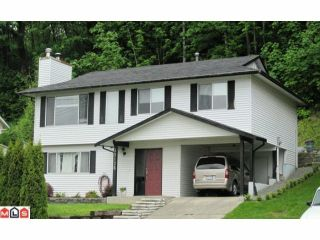 Photo 1: 35126 MCKEE Road in Abbotsford: Abbotsford East House for sale : MLS®# F1014600