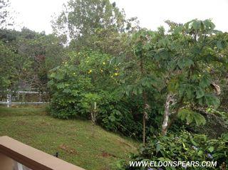 Photo 4: House for sale in Cerro Azul