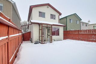 Photo 30: 5233 Martin Crossing Drive NE in Calgary: Martindale Detached for sale : MLS®# A1066480
