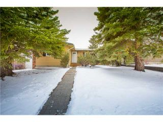 Photo 19: 1607 110 Avenue SW in CALGARY: Braeside_Braesde Est Residential Detached Single Family for sale (Calgary)  : MLS®# C3606899