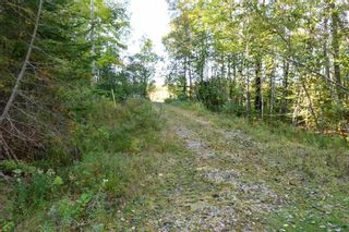 Photo 17: Lot 148 3619 Forties Road in Franey Corner: 405-Lunenburg County Residential for sale (South Shore)  : MLS®# 202125303