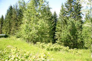 Photo 7: 4827 Goodwin Road in Eagle Bay: Vacant Land for sale : MLS®# 10116745