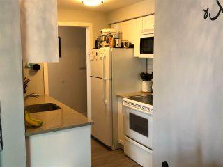 """Photo 8: 304 15238 100 Avenue in Surrey: Guildford Condo for sale in """"CEDAR GROVE"""" (North Surrey)  : MLS®# R2576105"""