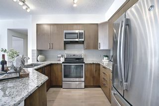 Photo 11: 110 838 19 Avenue SW in Calgary: Lower Mount Royal Apartment for sale : MLS®# A1073517