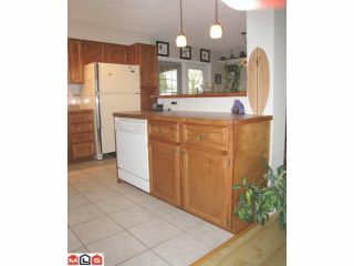 Photo 8: 2050 MARTENS Street in Abbotsford: Poplar House for sale : MLS®# F1208114