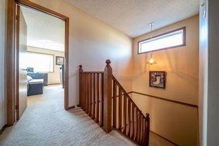 Photo 13: 55 EGLINTON Crescent in Winnipeg: Whyte Ridge Residential for sale (1P)  : MLS®# 202018570
