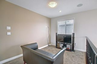 Photo 25: 458 Saddlelake Drive NE in Calgary: Saddle Ridge Detached for sale : MLS®# A1086829