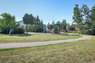 Photo 45: 131 Bridlewood Circle SW in Calgary: Bridlewood Detached for sale : MLS®# A1126092