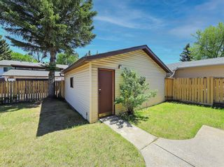 Photo 39: 216 Whitewood Place NE in Calgary: Whitehorn Detached for sale : MLS®# A1116052