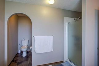 Photo 22: 325 CORAL SPRINGS Place NE in Calgary: Coral Springs Detached for sale : MLS®# A1066541
