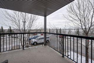 Photo 13: 217 1180 Hyndman Road: Edmonton Condo  : MLS®# E4138342