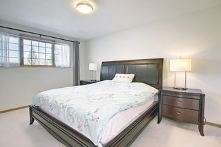 Photo 17: 211 Schubert Hill NW in Calgary: Scenic Acres Detached for sale : MLS®# A1137743