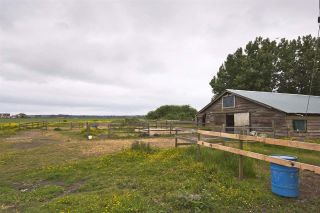 Photo 14: 2990 57B STREET in Delta: Agriculture for sale : MLS®# C8023503