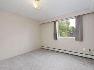 Photo 14: 118 1025 Inverness Rd in Saanich: SE Quadra Condo for sale (Saanich East)  : MLS®# 874962