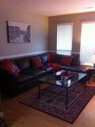 Photo 14: 20252 KENT Street in Maple Ridge: Southwest Maple Ridge House for sale : MLS®# R2098398
