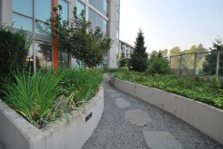 """Photo 14: 203 1550 FERN Street in North Vancouver: Lynnmour Condo for sale in """"Beacon at Seylynn Village"""" : MLS®# R2342729"""