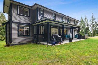 Photo 31: 12433 MCNUTT Road in Maple Ridge: Northeast House for sale : MLS®# R2547502