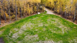 Photo 15: #9 North Pigeon Lake Estates: Rural Wetaskiwin County Rural Land/Vacant Lot for sale : MLS®# E4265016