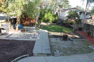 Photo 18: 7904 115A Street in Delta: Scottsdale 1/2 Duplex for sale (N. Delta)  : MLS®# R2292526