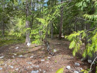 Photo 16: LOT 2 HIGHWAY 3A in Nelson: Vacant Land for sale : MLS®# 2455415
