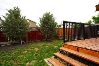 Photo 11: 53 Shauna Way in Winnipeg: Harbour View South Residential for sale (3J)  : MLS®# 202114373