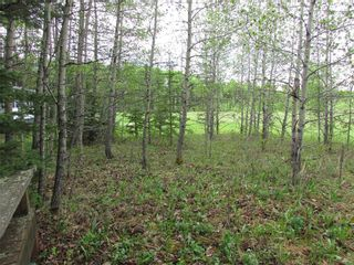 Photo 6: 103, 5227 TWP RD 320: Rural Mountain View County Land for sale : MLS®# C4299948