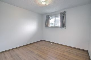 Photo 11: 4259 49 Street NE in Calgary: Whitehorn Detached for sale : MLS®# A1131311
