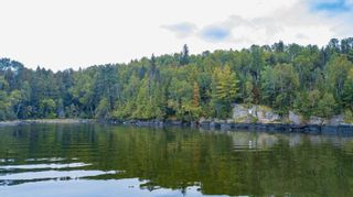 Photo 4: Lot 19 Five Point Island in South of Kenora: Vacant Land for sale : MLS®# TB212087