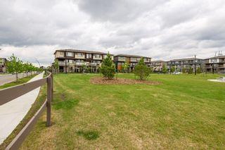 Photo 46: 2607 196 Street in Edmonton: Zone 57 House for sale : MLS®# E4248885