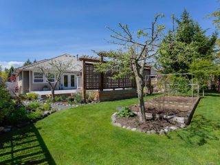 Photo 41: 3259 Majestic Dr in COURTENAY: CV Crown Isle House for sale (Comox Valley)  : MLS®# 829439