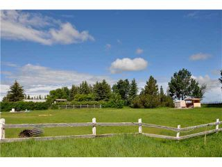 Photo 16: 243017 Range Road 240: Rural Wheatland County Residential Detached Single Family for sale : MLS®# C3624413