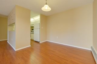 Photo 8: 302 10636 120 Street in Edmonton: Zone 08 Condo for sale : MLS®# E4236396
