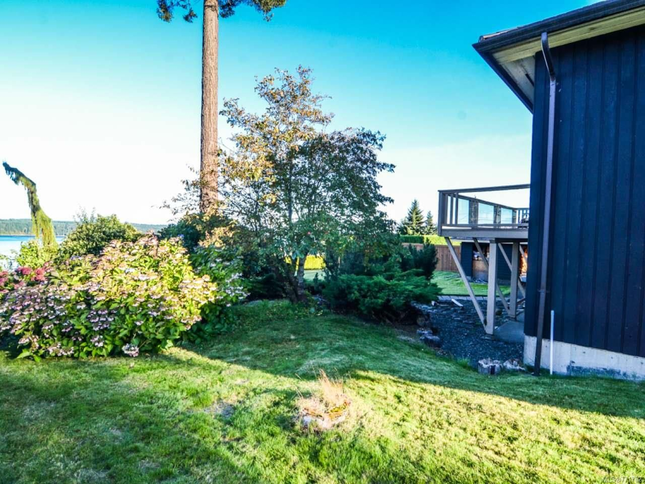 Photo 10: Photos: 451 S McLean St in CAMPBELL RIVER: CR Campbell River Central House for sale (Campbell River)  : MLS®# 771782