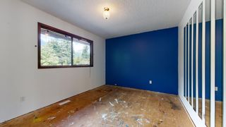 Photo 15: 41772 GOVERNMENT Road in Squamish: Brackendale House for sale : MLS®# R2603967