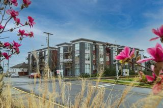 Photo 1: 301 555 Franklyn St in : Na Old City Condo for sale (Nanaimo)  : MLS®# 871952