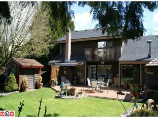Photo 10: 12872 CARLUKE Crescent in Surrey: Queen Mary Park Surrey House for sale : MLS®# F1111999