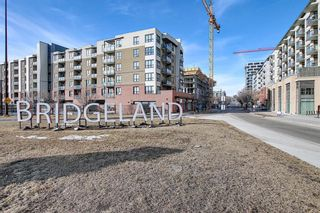Photo 33: 1005 38 9 Street NE in Calgary: Bridgeland/Riverside Apartment for sale : MLS®# A1077953