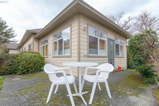Photo 17: 14 3281 Maplewood Rd in VICTORIA: SE Cedar Hill Row/Townhouse for sale (Saanich East)  : MLS®# 806728