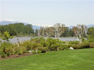 Photo 4: 207 6263 River Road in Residence at River House: Home for sale : MLS®# V972675