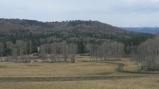 Photo 6: Corner of 178 Ave & 336 St W: Rural Foothills County Land for sale : MLS®# A1053038