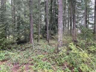 Photo 2: 2330 Extension Rd in : Na Chase River Land for sale (Nanaimo)  : MLS®# 871744