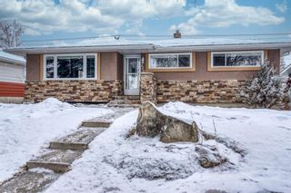 Photo 35: 220 78 Avenue SE in Calgary: Fairview Detached for sale : MLS®# A1063435