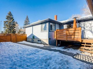 Photo 41: 95 Ferncliff Crescent SE in Calgary: Fairview Detached for sale : MLS®# A1064499