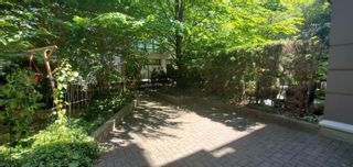"""Photo 8: 124 1185 PACIFIC Street in Coquitlam: North Coquitlam Condo for sale in """"CENTREVILLE"""" : MLS®# R2622507"""